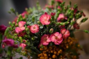 Najaarsevent_Plantion_2014_63